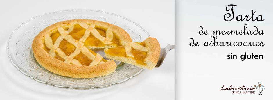 tarta-de-mermelada-de-albaricoques-sin-gluten